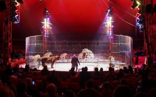 circo 1 20140505 1647453787