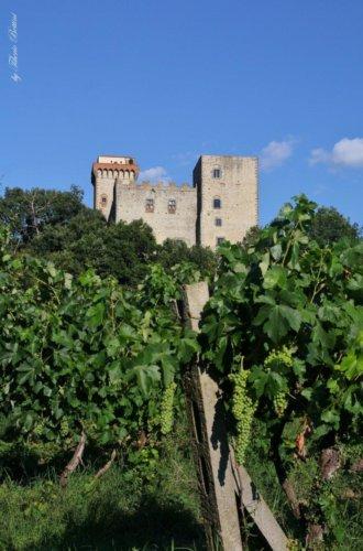 torre del castellano 1 20140721 1942080737