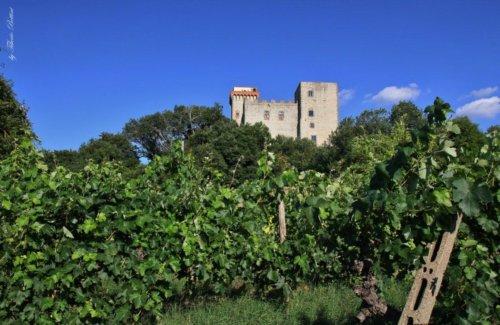torre del castellano 2 20140721 1898061778