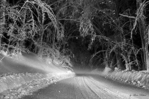 vallombrosa sotto la neve 4 20150218 1839184178