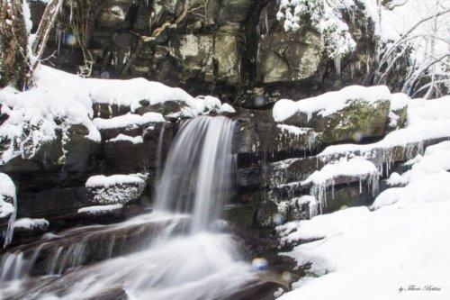 vallombrosa sotto la neve 6 20150218 1172344695